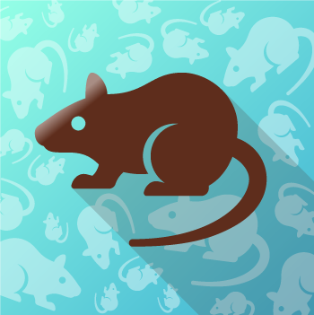 ARC symbolic icon- a rat